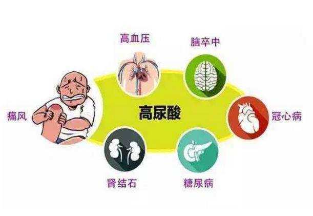 尿酸高2.jpg