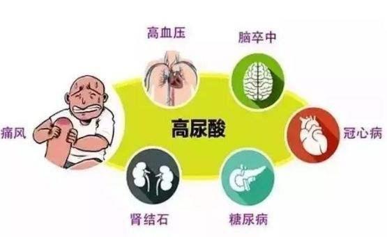 痛风会引起哪些疾病?如何防止高尿酸血症痛风发作?
