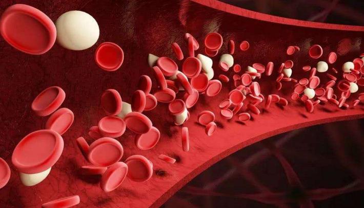 小分子肽能修复血管吗.png