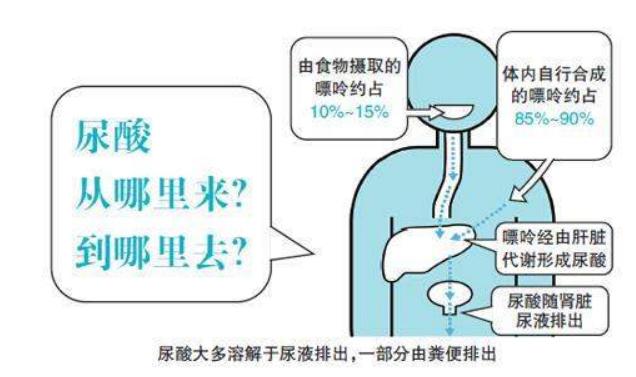 抑制尿酸生成的药有哪些.png
