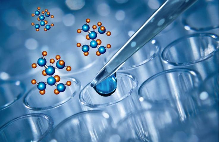 小分子肽治疗痛风.png