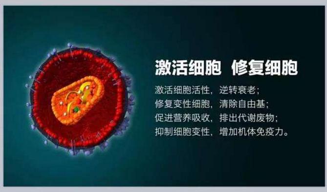 小分子肽对痛风怎么样.png
