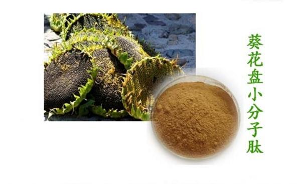 葵花盘中小分子肽与高尿酸和痛风